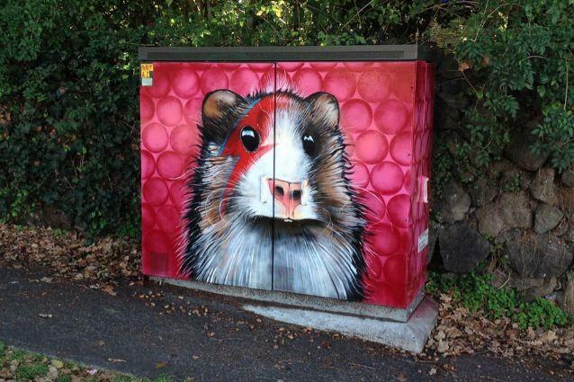 Auckland: ecco come le cabine elettriche diventano opere di street art