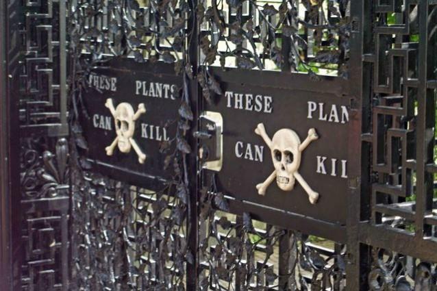 Alnwick Garden: benvenuti nel giardino più velenoso del mondo