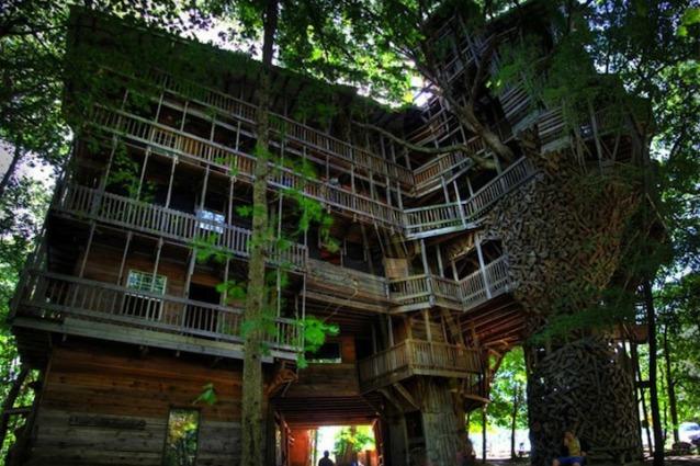 15 anni per costruire la casa sull'albero più grande del mondo