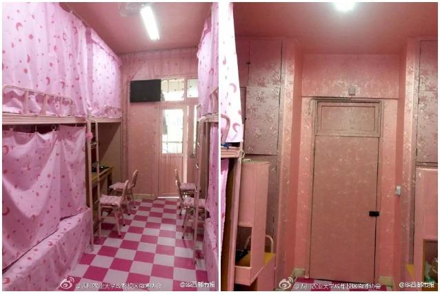 Cina ecco il dormitorio pi rosa del mondo che accoglie - Si possono portare passeggeri con il foglio rosa ...