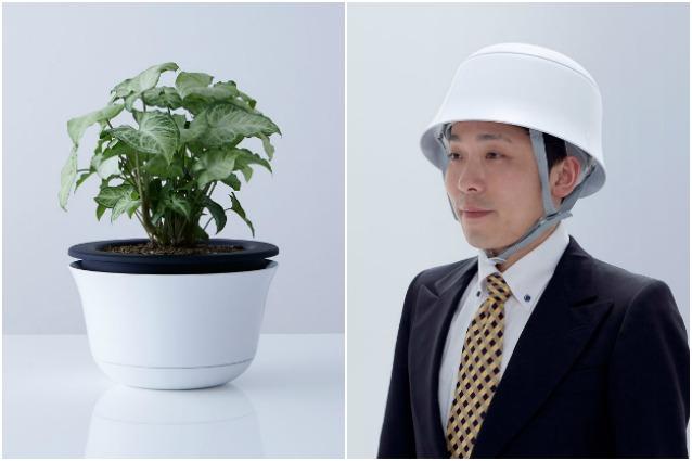 Questo vaso può salvare la vostra vita durante un terremoto: ecco la geniale invenzione