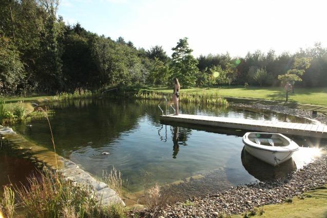 Ecco come creare una piscina biologica fai da te for Costruire piscina fai da te