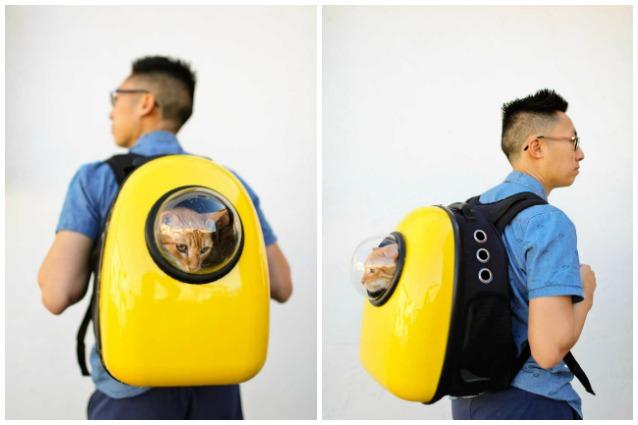 Questo zaino farà viaggiare il vostro gatto come un astronauta