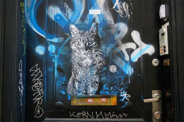 Gatti sui muri delle città: quando la street art illumina anche le strade più buie