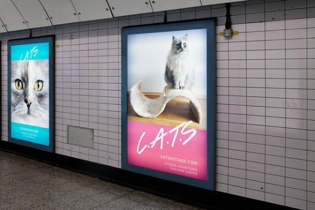 C.A.T.S.: gatti al posto dei cartelloni pubblicitari nella metropolitana di Londra