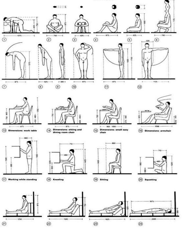 Dimensioni standard degli arredi chi le ha inventate e - Misure standard divano ...
