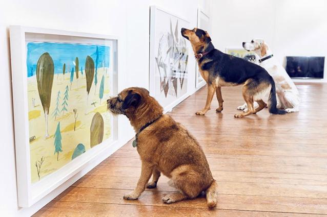 Play More: ecco la prima mostra d'arte al mondo solo per cani