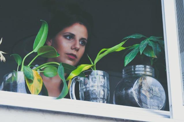 Quali sono le migliori piante per purificare l'aria di casa? Ecco la lista della NASA