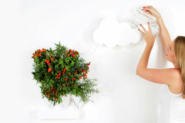 Come coltivare un orto in casa quando manca tempo e pollice verde