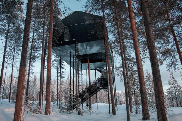 Svezia, una casa sull'albero unica: benvenuti nella settima meraviglia del Treehotel