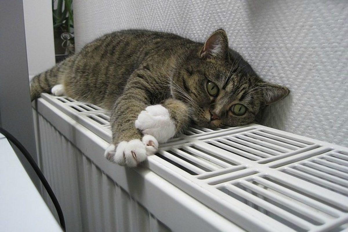 Come Riscaldare Ambienti Grandi 10 modi per riscaldare casa senza spendere troppo