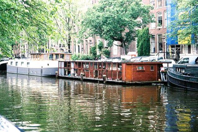 Catboat: il primo rifugio per gatti che galleggia