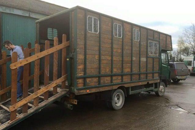 Da vecchi box per cavalli a case di lusso: ecco l'idea geniale di un artigiano inglese