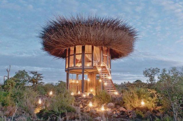 Una suite a nido di uccello: benvenuti nell'hotel di lusso più piccolo al mondo