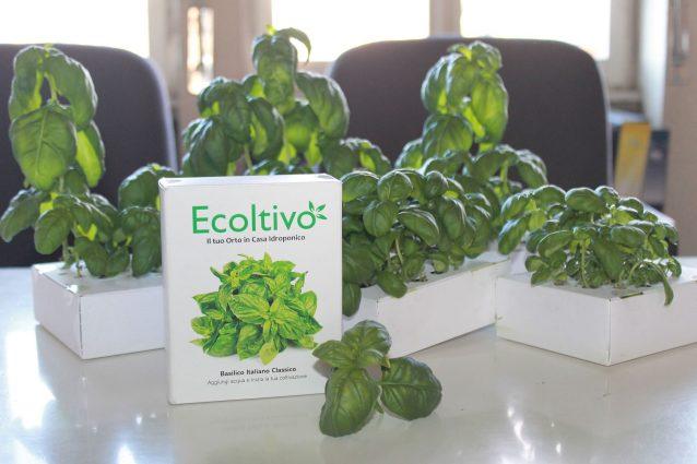 Ecoltivo: come coltivare l'orto in casa propria