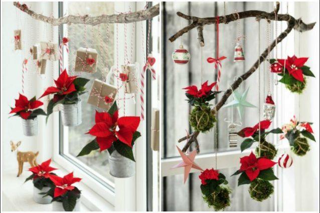 Super Riciclo creativo con le Stelle di Natale come decorare casa a festa AZ19