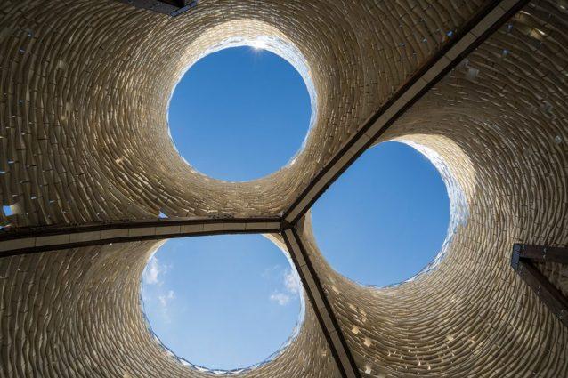Hy Fi, l'edificio fatto di funghi perfetto anche per vivere