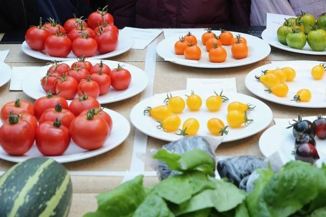 Gli antiossidanti naturali che combattono rughe e segni del tempo
