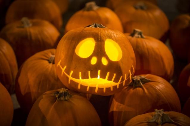 10 idee originali per intagliare le zucche di halloween foto for Foto zucche halloween