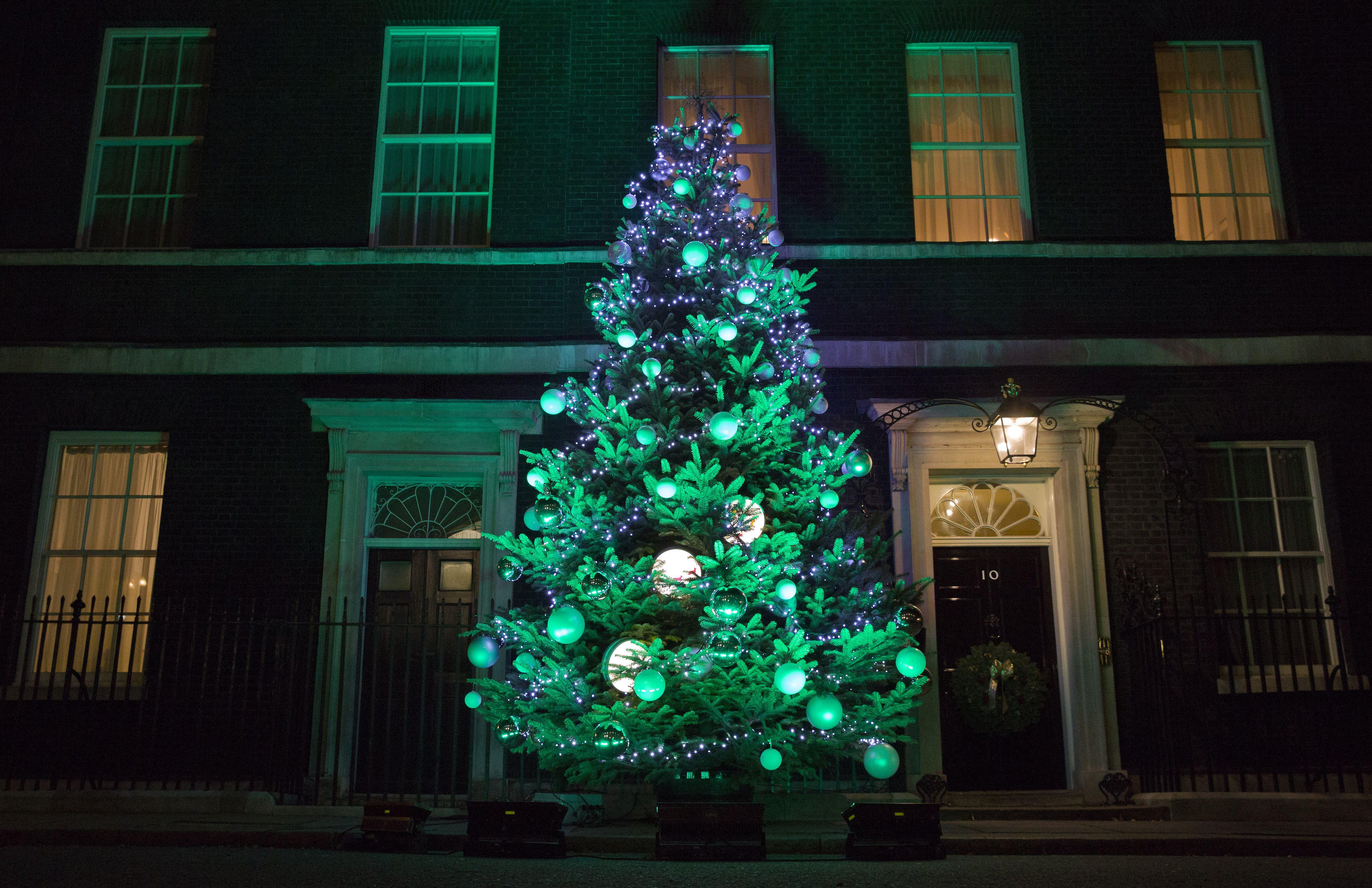 Illuminazione Esterna Natale : Luci sull albero di natale quali utilizzare e come metterle video