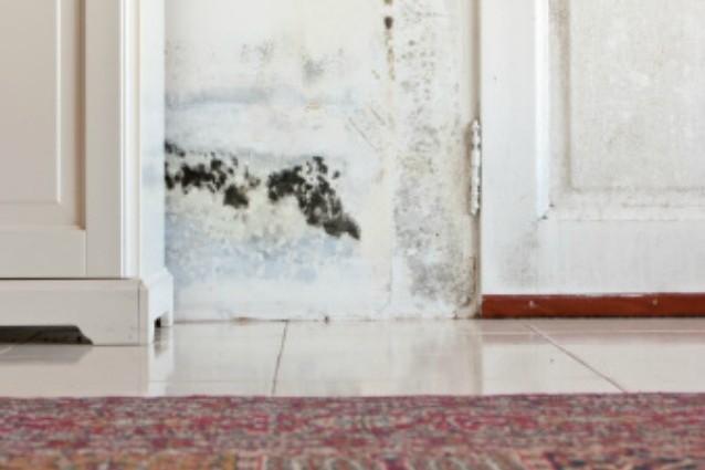 Come eliminare l\'umidità dai muri con soluzioni alternative
