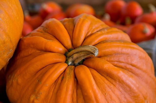Zucca: proprietà, benefici e ricette