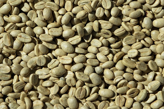 Caffè verde: la bevanda benefica per dimagrire