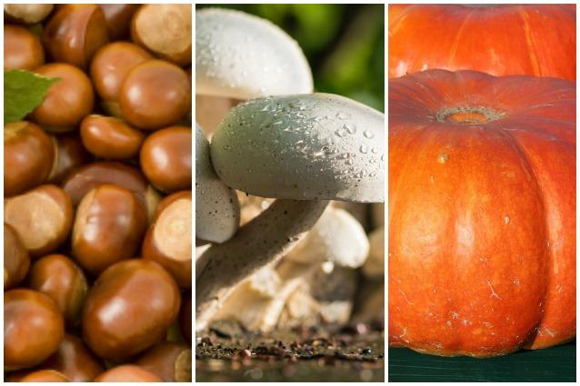 Frutta e verdura di stagione: la spesa di ottobre