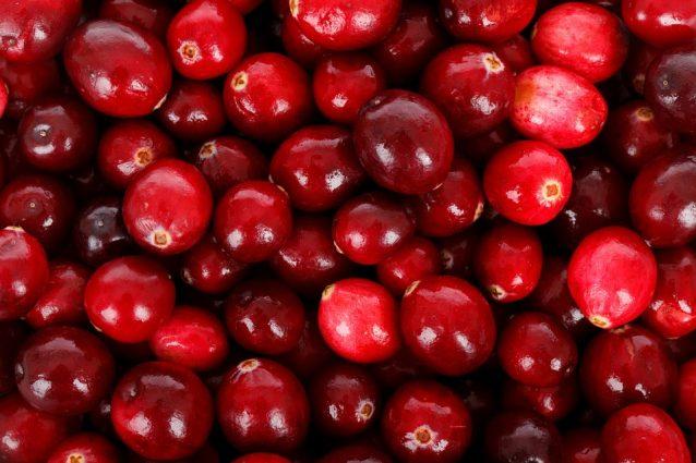 Mirtillo rosso: proprietà e benefici del cranberry americano