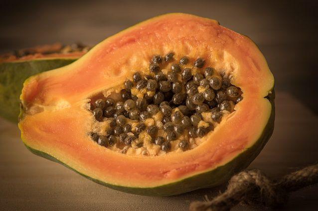 Papaya fermentata: proprietà benefiche e controindicazioni