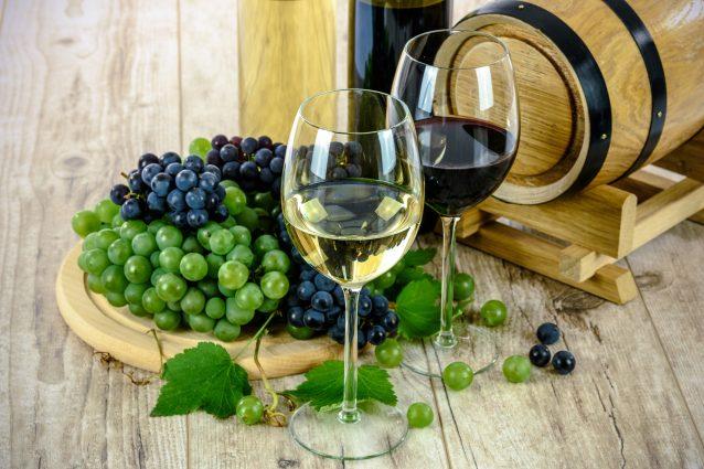 Bere vino potrebbe aiutare a perdere peso: ecco perché