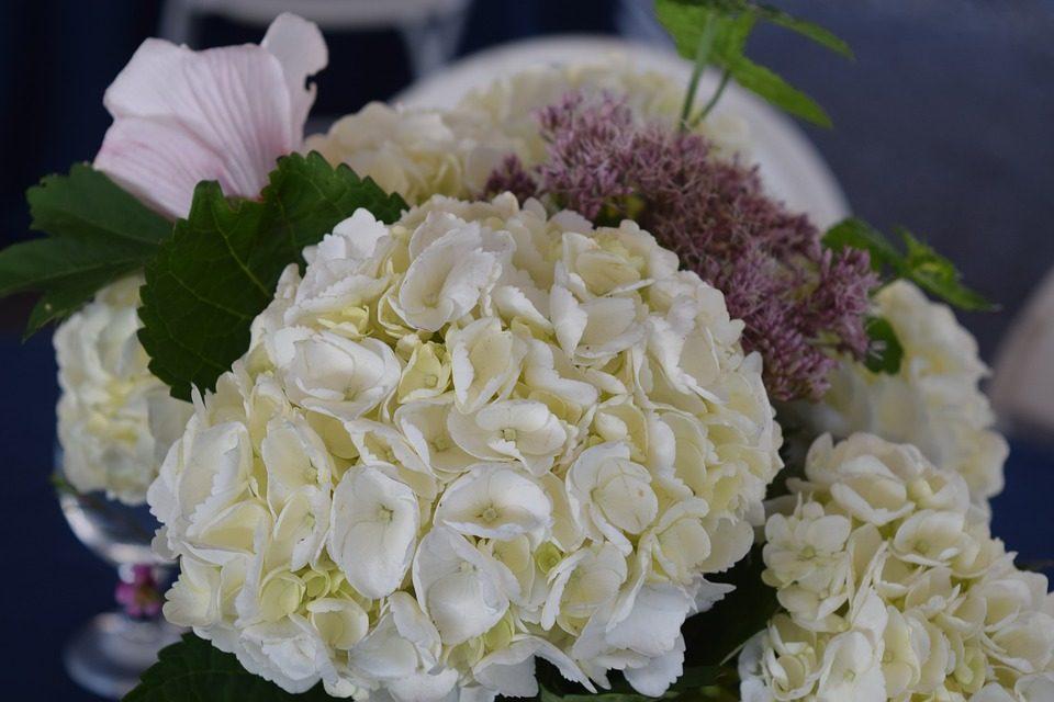 Extrêmement Come scegliere i fiori per il matrimonio 10 consigli da non perdere XK74