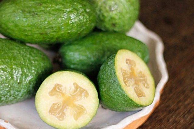 feijoa tutte le propriet del piccolo frutto ricco di