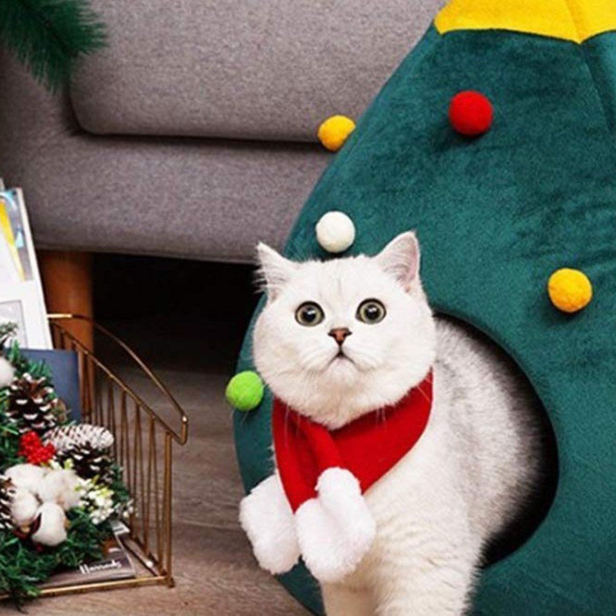 Cuccia Gatto Fai Da Te natale da gatti: arriva la cuccia a forma di albero decorato