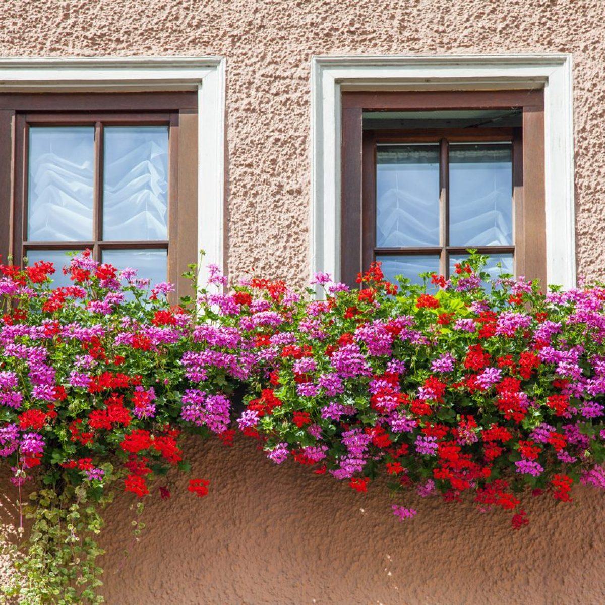 Fioriera da balcone con serbatoio di acqua 80/cm Antracite e bianco