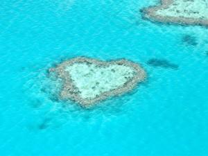 Heart Reef, Grande barriere corallina, Australia.