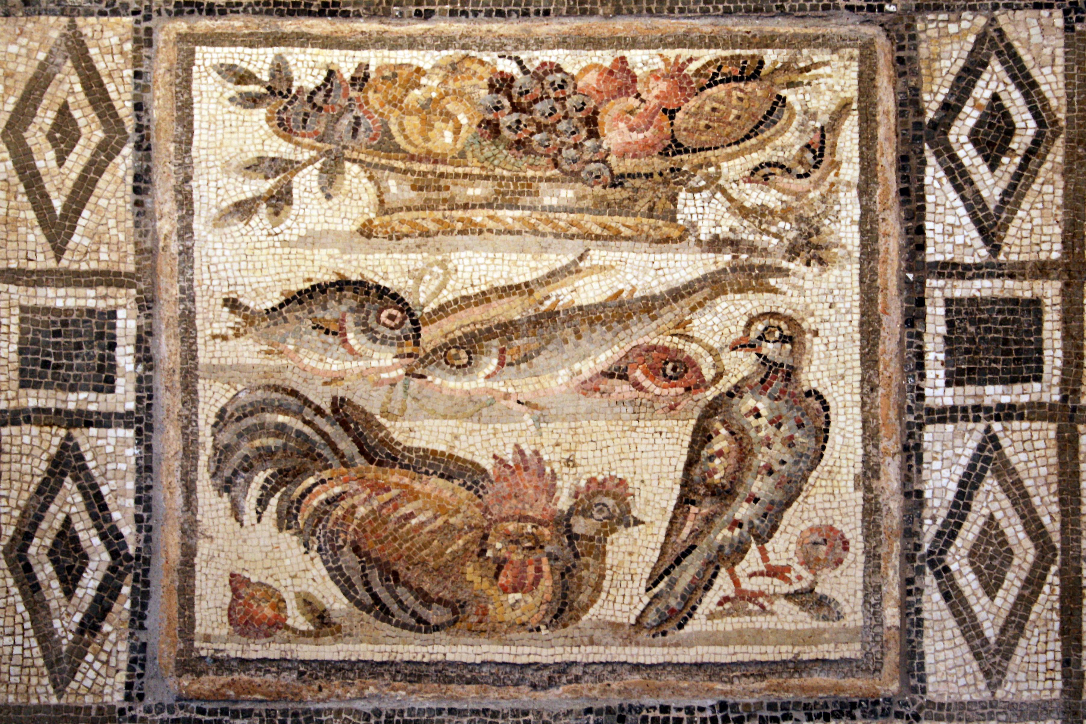 L'impossibile ananas nel mosaico romano: le legioni giunsero in America?