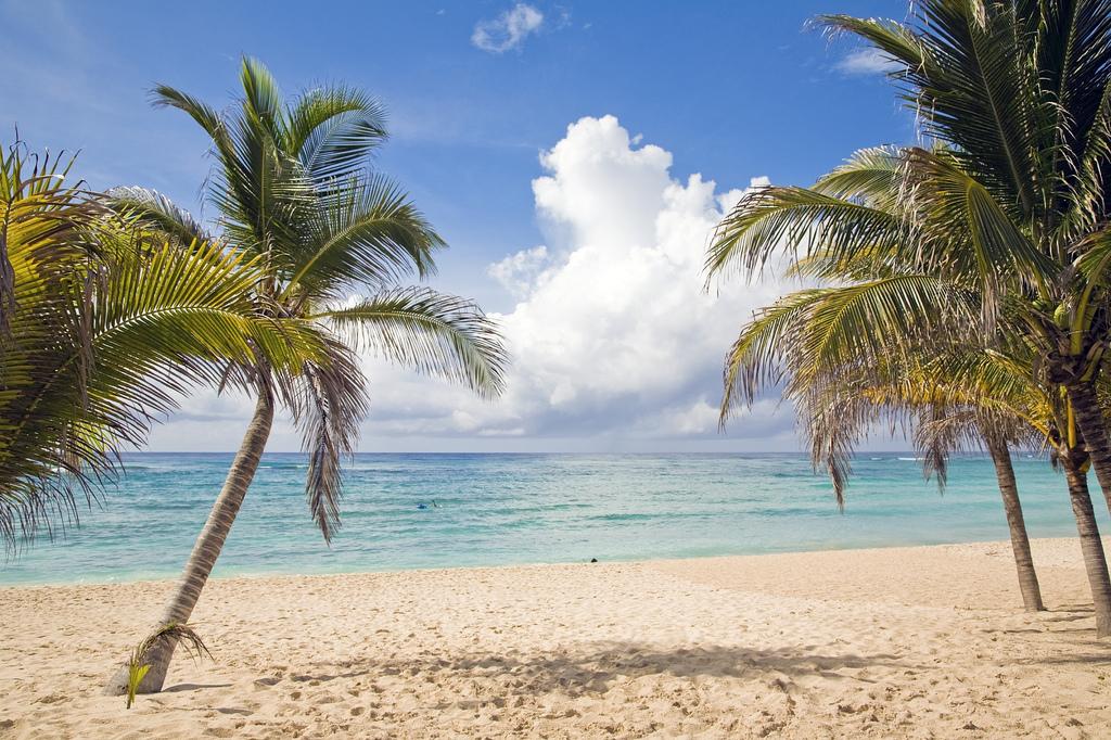 Playa del Carmen, Quintana Roo, Messico (Foto da Flickr).