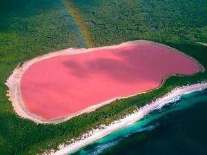 I laghi più rosa del mondo
