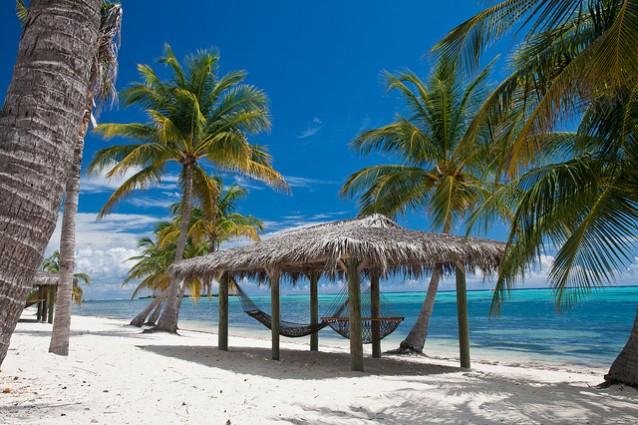 Grand Island Palm Beach Tan