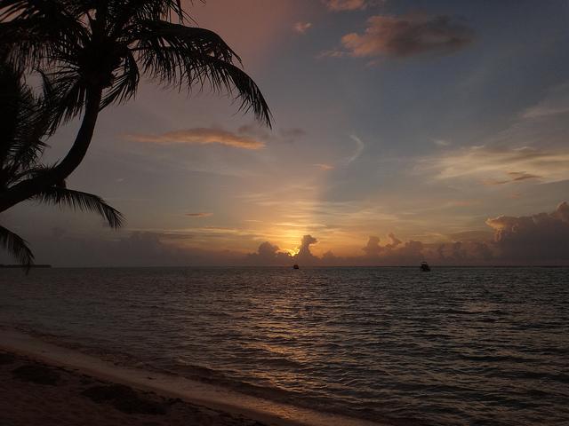 Alba a Little Cayman – Foto di Serge Melki