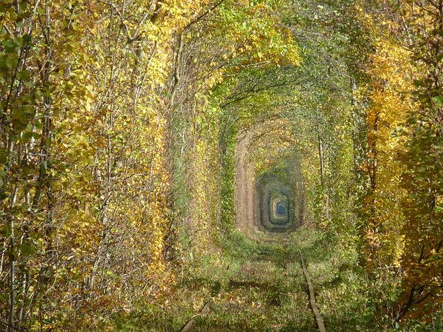 Tunnel of Love – Foto Wikipedia