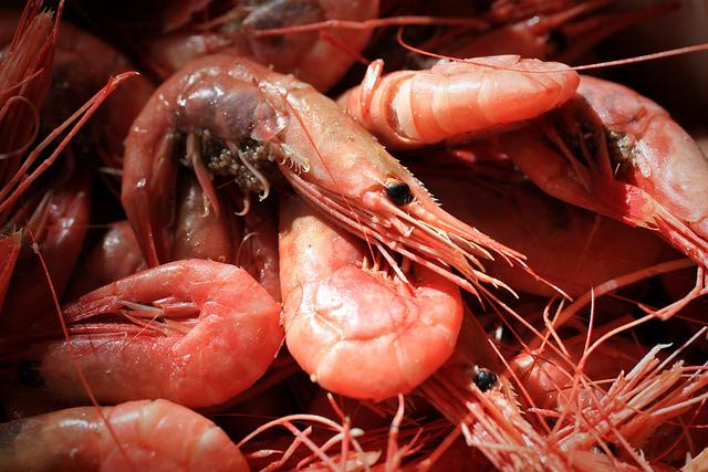 Il pescato svedese è uno dei più buoni del mondo. Foto da Flickr