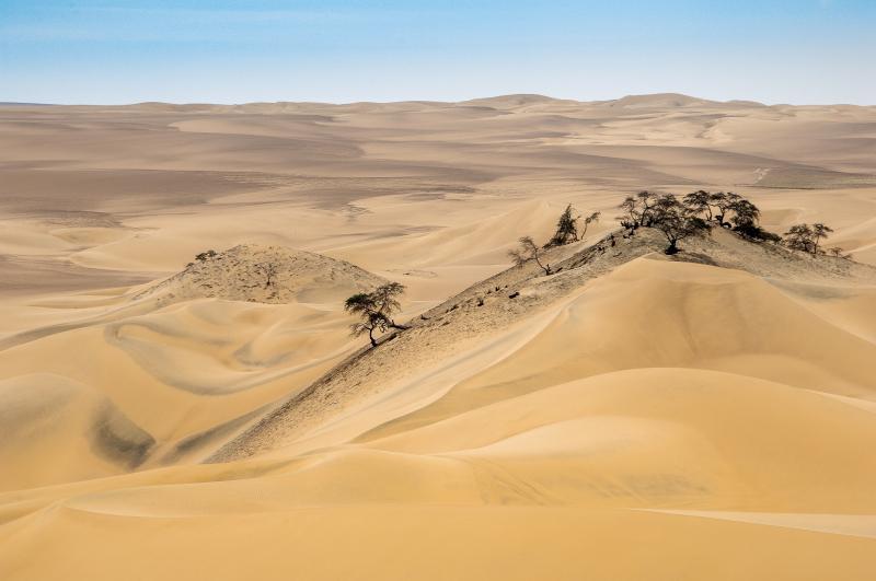 Deserto di Nazca