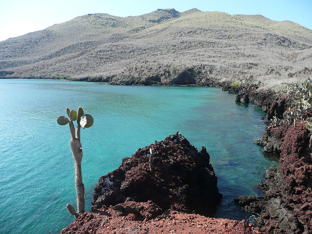 Isola Galapagos – Foto di Randal Sheppard