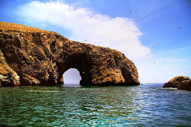 Isole Ballestas – Foto di Chimi Foto