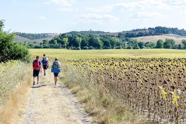 In cammino sulla Via Francigena in Toscana – Foto: Wikimedia Commons