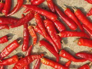 Peperoncino rosso. Foto da Pixabay