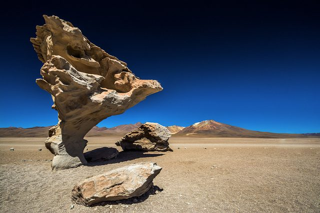 Árbol de Piedra – Foto di Marco Nürnberger
