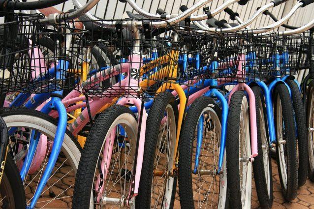 Ferrara: una città da visitare pedalando